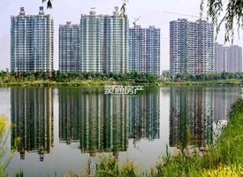 金鑫·滨湖一号