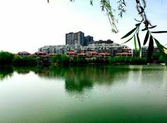 鼎鑫黄金水岸